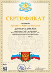 Сулейманова А.В. 08.01.2018