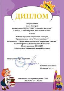 Тавинцева-Белов 1место 19.01.17г.
