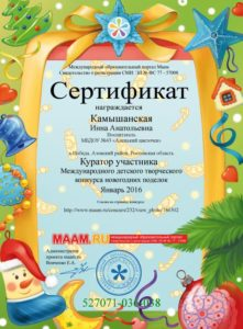 kamyshanskaya-kurator-01-16g