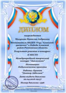 migunova-nataliya-2-mesto-prooekt-04-16g